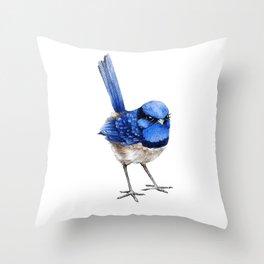 Splendid Fairy Wren, Blue on White Throw Pillow
