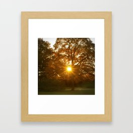 Channeling Light Framed Art Print
