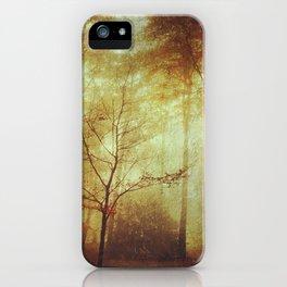 Fall Meditations iPhone Case