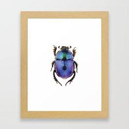 Blue ombre beetle watercolor Framed Art Print