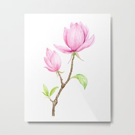 Watercolor Pink Magnolia Illustration Metal Print