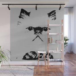Pussy Cat / Himalayan Wall Mural