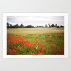 Poppy field. Art Print