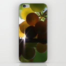 Grapes 3 iPhone Skin