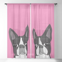 Boston Terrier Lilly Sheer Curtain