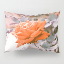 Red Rose in Purplechrome  Pillow Sham