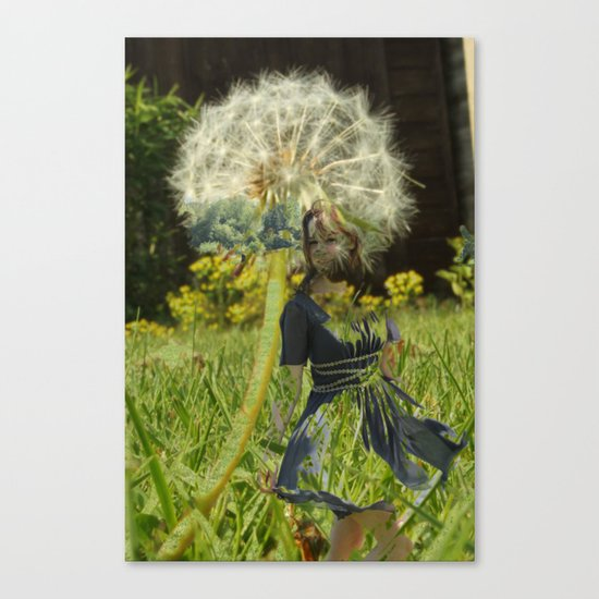 Flower Fairies Canvas Print