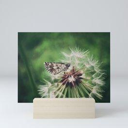The Skipper Butterfly. Mini Art Print