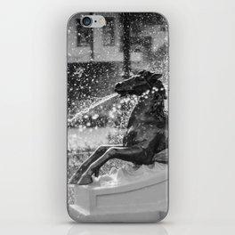 Horse Fountain Sculpture iPhone Skin