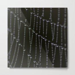 The Web of Life Metal Print