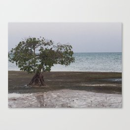Waiting on Water Canvas Print