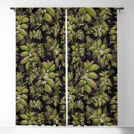 Coffee Bean Plant Green Blackout Curtain