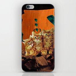 Kittens Hear All iPhone Skin