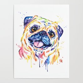 Fawn Pug Colorful Watercolor Pet Portrait Painting Poster