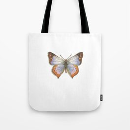 Butterflies: Common Opal Tote Bag