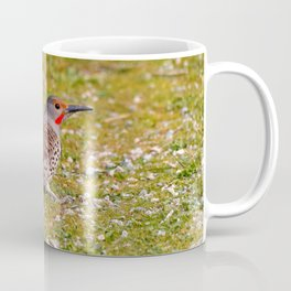 Adult Northern Flicker in the Grass Coffee Mug