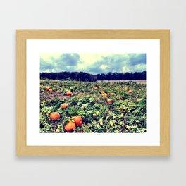 Autumn's Fruit Framed Art Print