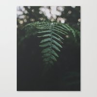 fern Canvas Prints featuring Fern by Bor Cvetko