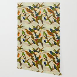 Translate Album de aves amazonicas - Emil August Göldi - 1900 Colorful Hummingbirds Wallpaper