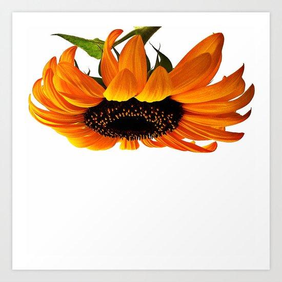FLOWER 032 Art Print