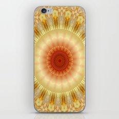 Mandala 9 iPhone & iPod Skin
