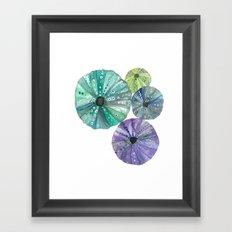 Hawaiian Sea No. 2 Sea Urchins Throw Pillow Framed Art Print