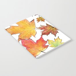 Autumn Maple Leaves Notebook