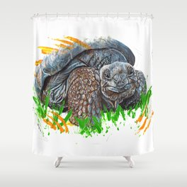 Galapagos Tortoise Shower Curtain