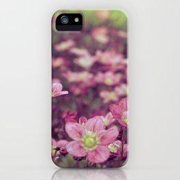 Pink Saxifrage iPhone Case