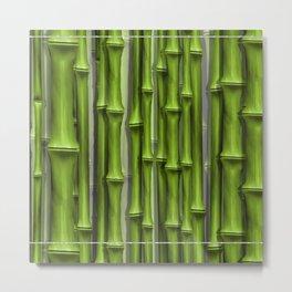 BambooGreen by John Logan Metal Print