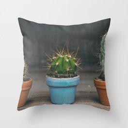 Cactus Prickly Desert Plant Throw Pillow