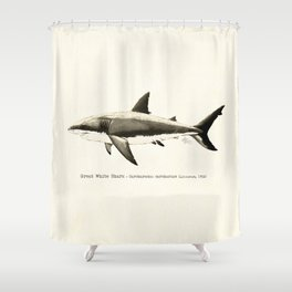 """Carcharodon carcharias II"" by Amber Marine  ~ Great White Shark Illustration, (Copyright 2015) Shower Curtain"