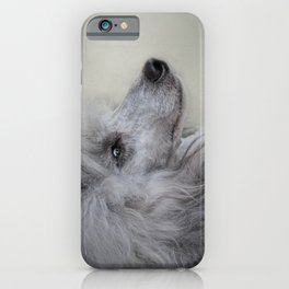 Longing - Silver Standard Poodle iPhone Case