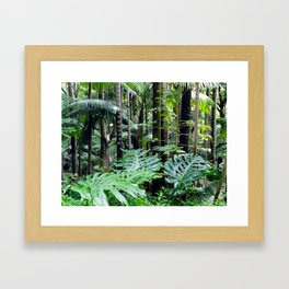 Tropical Forest 05 Framed Art Print