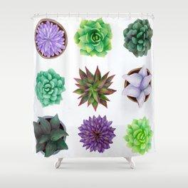 Succulent Friends Shower Curtain