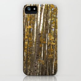 CO Aspens iPhone Case