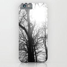 Sundial iPhone 6s Slim Case