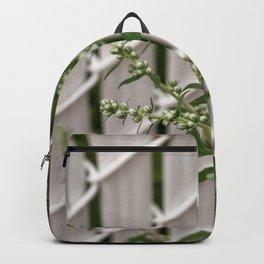 2018-07-15 Backpack