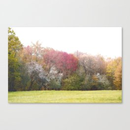 Colorful Flowering Spring Trees Canvas Print