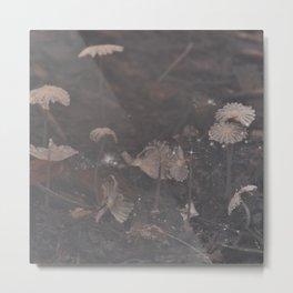 Magical Mushrooms Metal Print