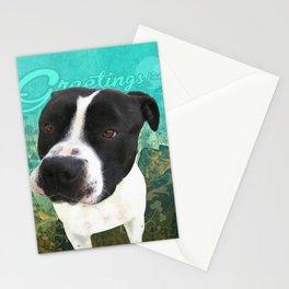 BOB (shelter pup) Stationery Cards