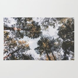 Silent in the Trees Rug