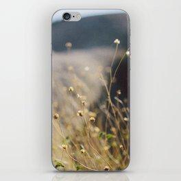 In the Desert iPhone Skin