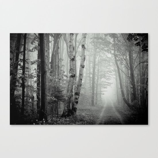 Two Track Road Canvas Print