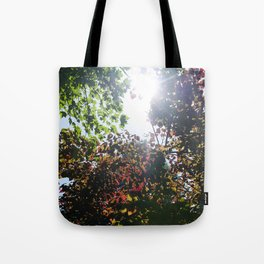 Be The Change You Wish To See Tote Bag