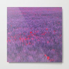 purple poppy field I Metal Print