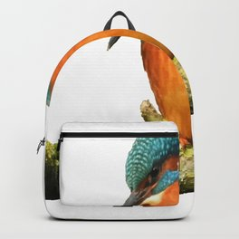 Stunning Kingfisher Vector Backpack