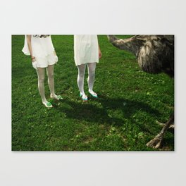 Where am I? Who are you? Canvas Print