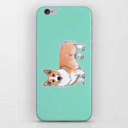 Pembroke Welsh Corgi dog iPhone Skin