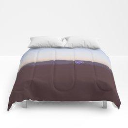 Santa Monica Nights  Comforters